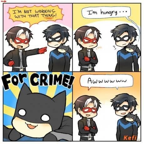 The Batcat. .