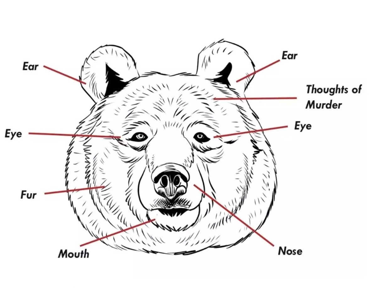 The bears are coming. Bearmaggedon is upon us. .. Give it a few thousand years and we will have thousands of retarded bear breads and we will love them more than anything Bears are just big fat doggos