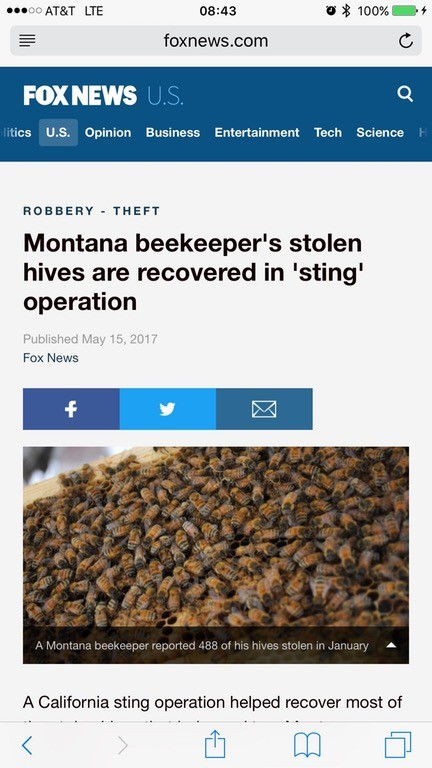 The beekeeping community has been buzzing about this news. . FOX NEWS foxnews, corn C ties . Opinion Business arr: ' i Test': Science THEFT Montana beekeeper' s