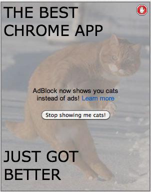 The Best Chrome App, Just Got Better.. deeeeeeem tags. THE BEST CHROME APP Adblock ram shigga instead of adsl Lea cats ore Stop showing we cats! '.. JUST GOT BE