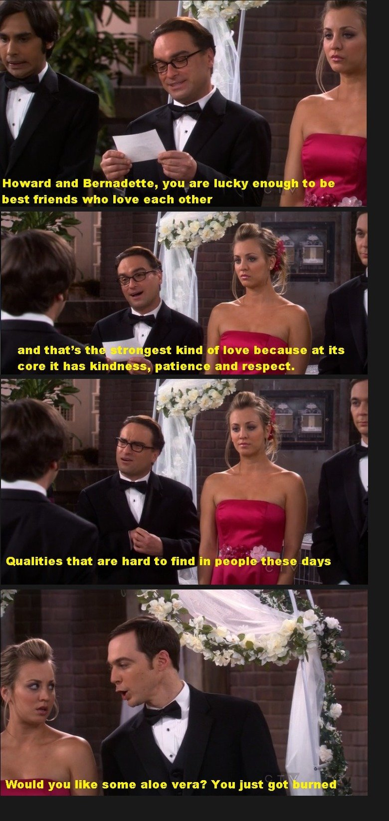 The Big Bang Theory. This is From The Big Bang Theory Season 5 Episode 24 And yes it is From a TV SHOW. Howard and Bernadette, yen are lucky enough to be best f