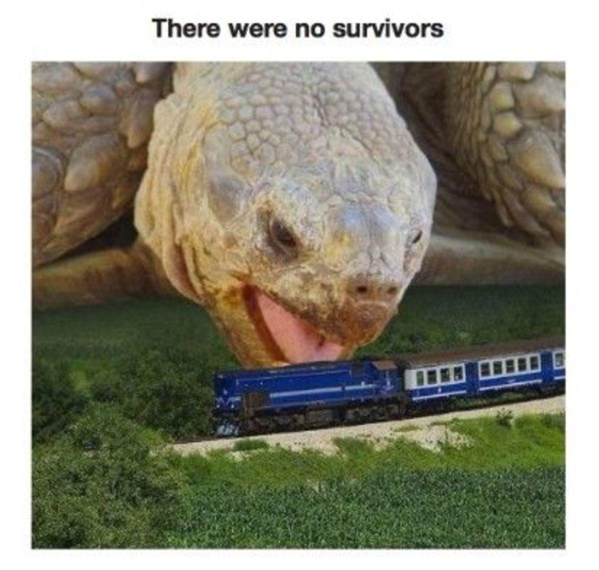 the big nom. . were no survivors