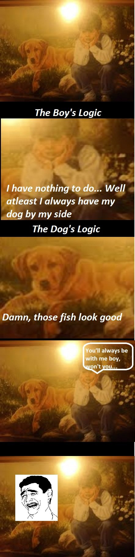 The boy, the dog and the pond. logic. The Boy' s Logic l have nothing to do... Well atleast I always have my dog by my side The Dog' s Logic Damn, those fish lo