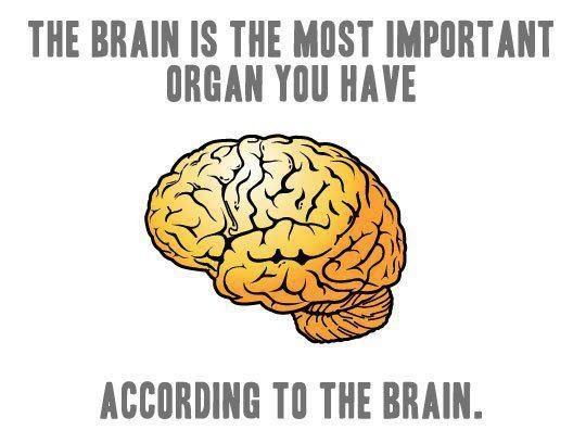 The Brain is Great. . THE It THE MST Mill' ilol' l' wtt) Tl] THE BRAIN.. Well it's not like the other organs are going to argue with it.