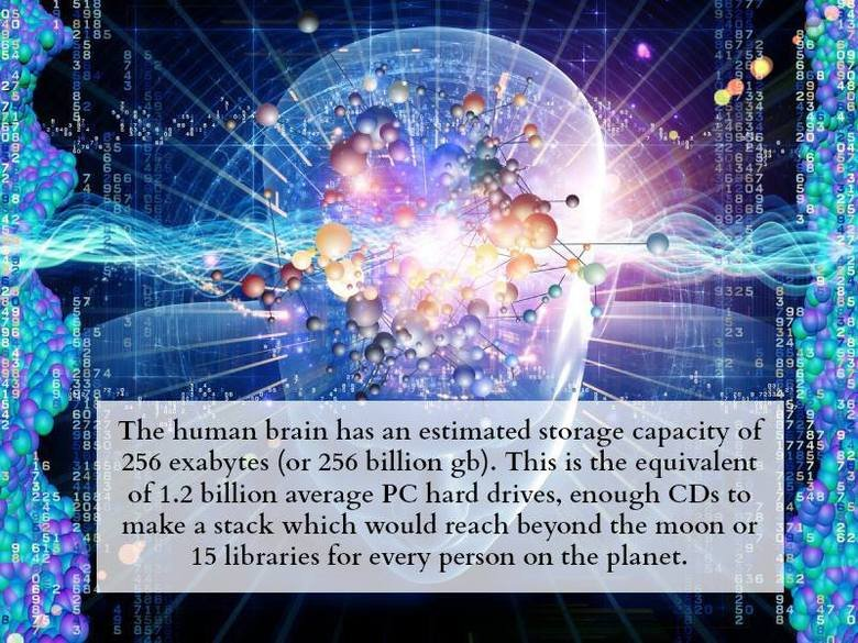 The brain. That was a Waiting reference. r/ jrs, gm ofa. E billion average PC hard drives, enough CDA to 1%'! 'r.) , pl It . l 3 stock would reach beyond the mo