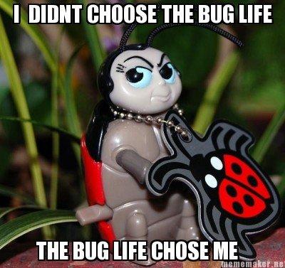 The Bug Life. . I MINT WHOSE m BUG ME thiiss.. r. alacrity. lmao