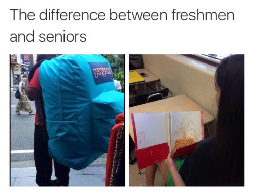 The difference. . The difference between freshmen seniors. Pffft most seniors keep their spaghetti in a satchel