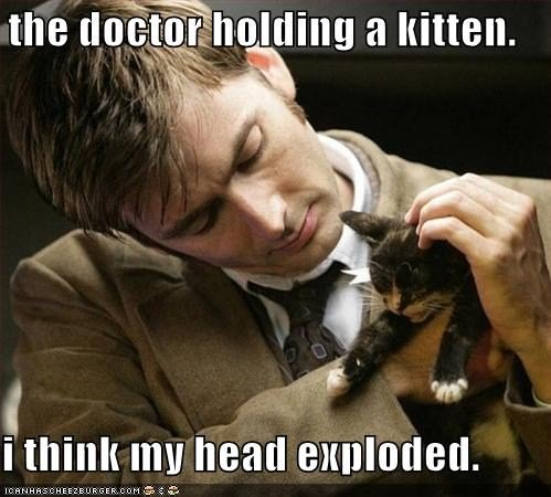 """The Doctor+kitten=epic cuteness. . the tlg mill"""" ft kitten. mu new .. I'm getting really tired of; 1° doctor who 2° cats."""