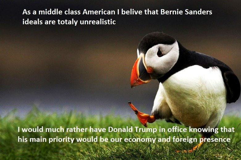 The Donald. Sorry....but he's crazy. As a middle class American I belive that Bernie Sanders ideals are totaly unrealistic I would much rather have Donald Trump