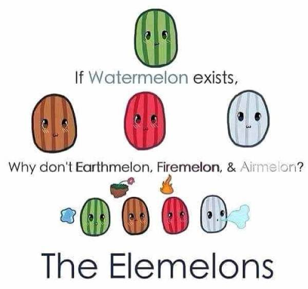 The ELemelons. .. Why? For the glory of Melon Lord of course!