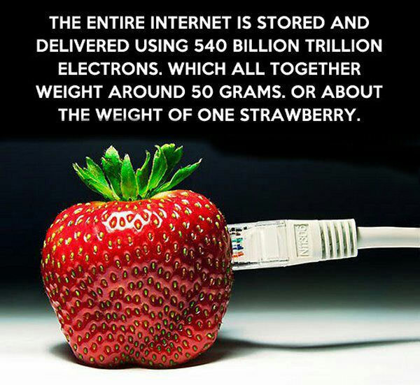 The Internet in a Strawberry. . THE ENTIRE INTERNET IS STORED AND DELIVERED USING 540 BILLION TRILLION ELECTRONS. WHICH ALL TOGETHER WEIGHT AROUND 50 GRAMS. OR