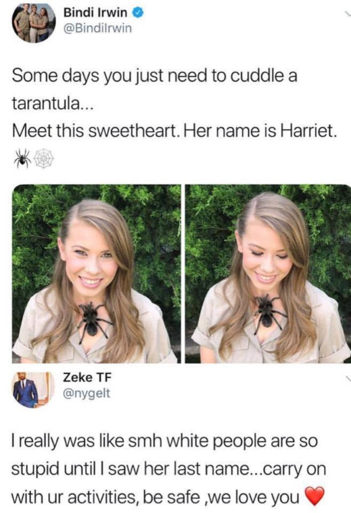 The Irwins have immunity. . Bindi Irwin Some days you just need to cuddle a tarantula... Meet this sweetheart. Her name is Harriet. I really was like smh white