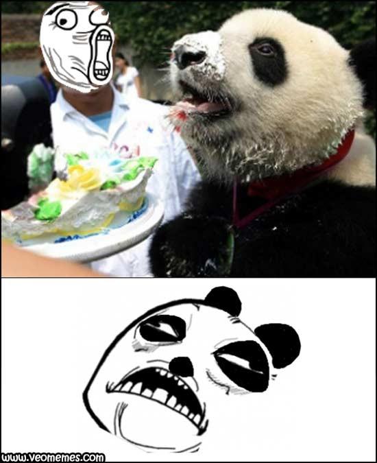 "The Junkie Panda. . t"" BEGUM"