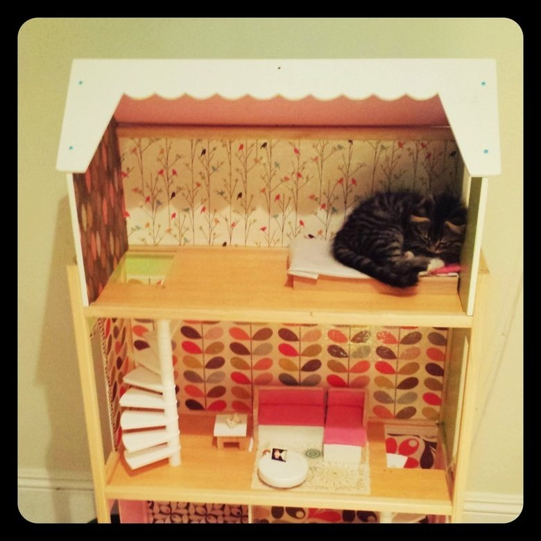 The kittens house.. I made a dollhouse for my niece, but the kitten has other plans for it... I-it's laying on the little bed... icon art by