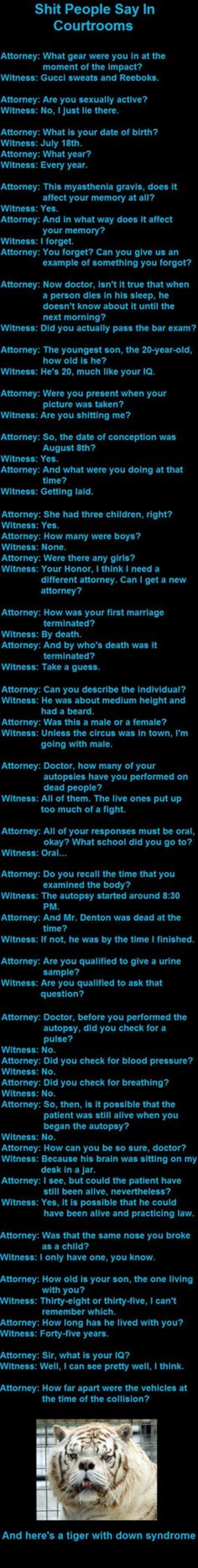 The Law Is An Ass. .. Attorney: What is your date of birth? Witness: July 18th Attorney: What year? Witness: Every year.