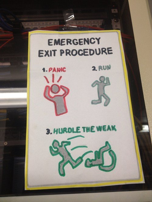 The Law of the Jungle. . an PROCEDURE Ame a. turtl