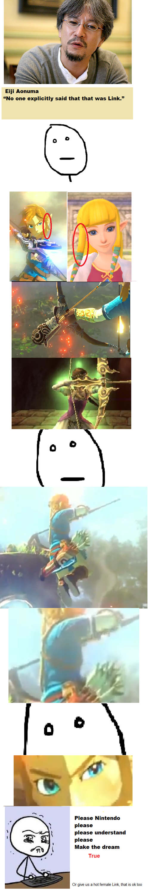 The Legend of... Zelda?. .. Plot twist: at the end of the game it is revealed that you've been playing as Luigi the entire time.