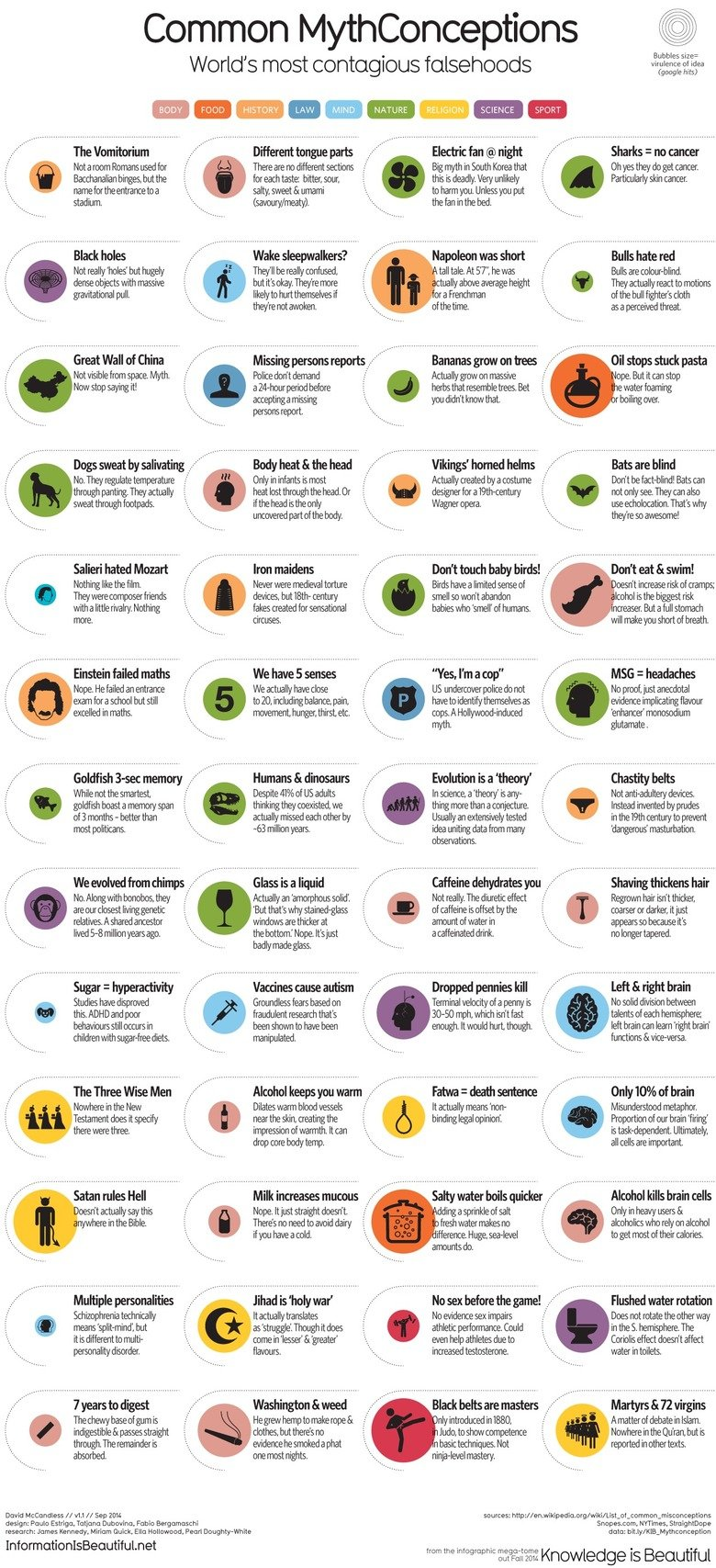 """The Lies You've Been Taught. Also don't forget that jet fuel can't melt steel. Common Myth Conceptions Bubbles size: World' s most contagious falsehoods """"ttjr/"""