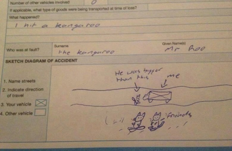 The most Australian insurance claim ever. .
