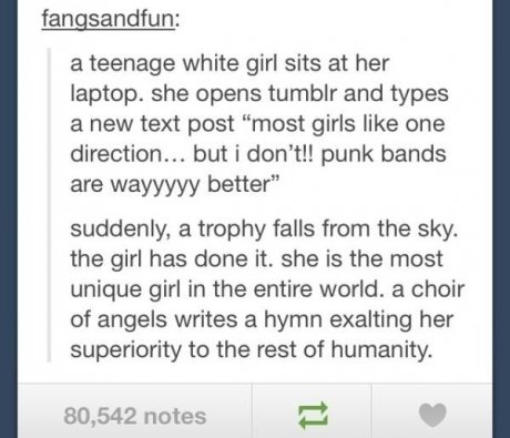"""The most unique girl in the universe. . a teenage white girl sits at her laptop. she opens tumblr and types a new text post """"most girls like one direction... bu"""