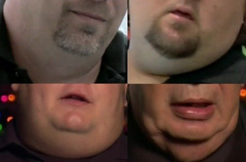 The Necks of Pawn Stars. .. I dunno man, i dont think theres much of a market for this, let me call in an expert in fat necks
