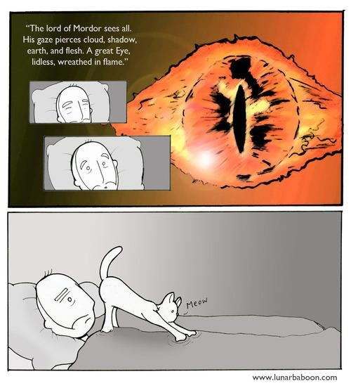 The third eye. all credit www.lunarbaboon.com. Velcro. 4': flame''. Blind.