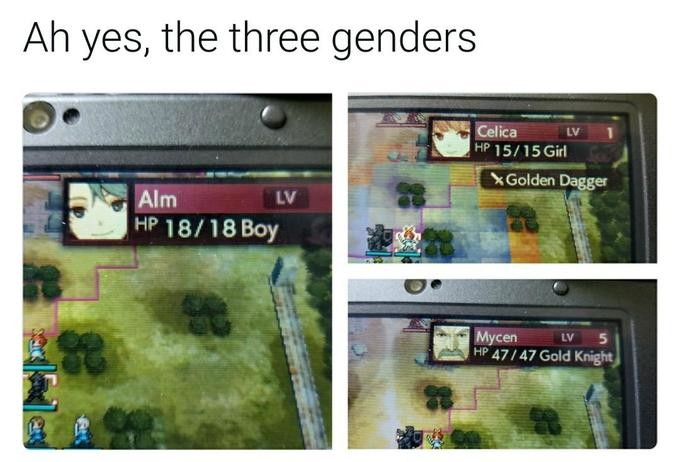 The three genders. . Ah yes, the three genders. there are three genders: those who seek strength those who live for pride and those who can read the tide of battle