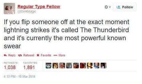 The Thunderbird. t( ͡° ͜ʖ ͡°t) hunny. it hr '.3. Feline: If you flip someone oft at the exact moment lightning strikes it' s belied The Thunderbird and it' s cu