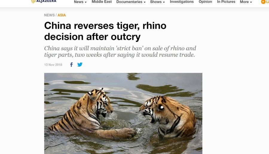 The tigers and rhinos are safe for now. Looks China realized its mistakes. It was quick as too. For anyone who doesnt a 25 year old ban was lifted off for china
