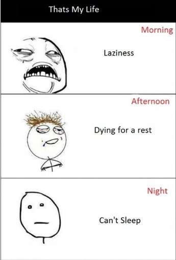 the truth. so true. Laziness Afternoon Dying for a rest Night Can' t Sleep