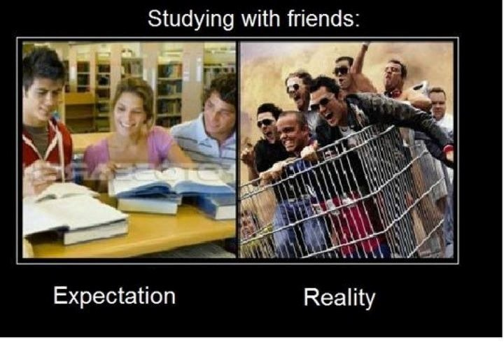THE TRUTH. . Studying with friends:. reality