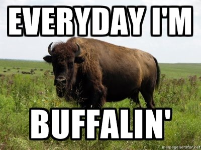 The Buffalo. Everyday he's Buffalin'.. Funnier than half the on the front page.