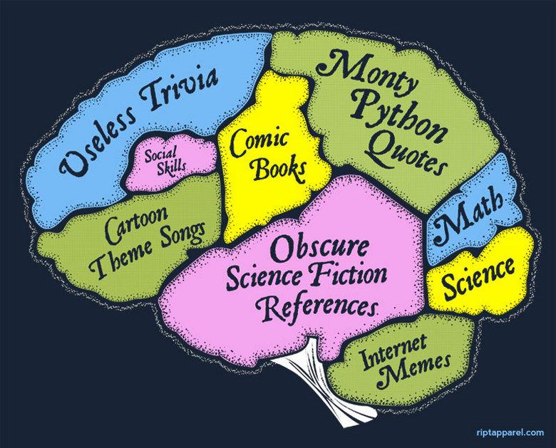 The brain. . com