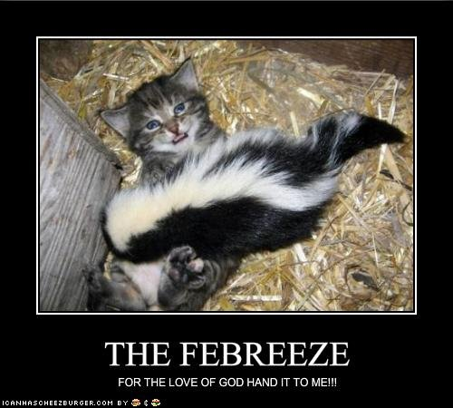 THE FEBREEZE. sorry if its a repost, im just doing what funnyjunk told me.. your pussy stinks