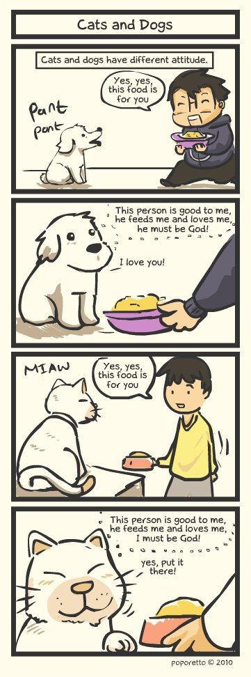 The difference between cats and dogs. Lol.<br /> Comments or thumbs please? :3. Cats and Dogs Cats and dogs have different attitude, Xes yes this fund is