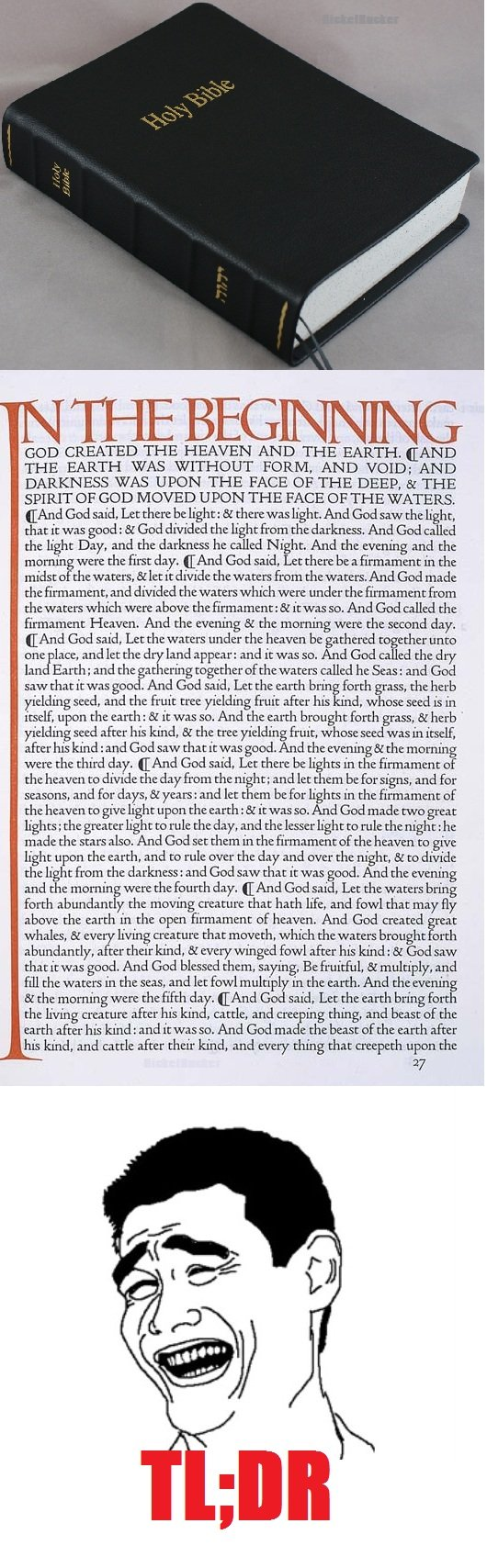 The Bible. OC by me. Not sure if repost... Haven't seen it myself. NOT A BASH ON CHRISTIANS!!! I'm one myself.. GOD CREATED THE HEAVEN AND THE EARTH. CAND THE E