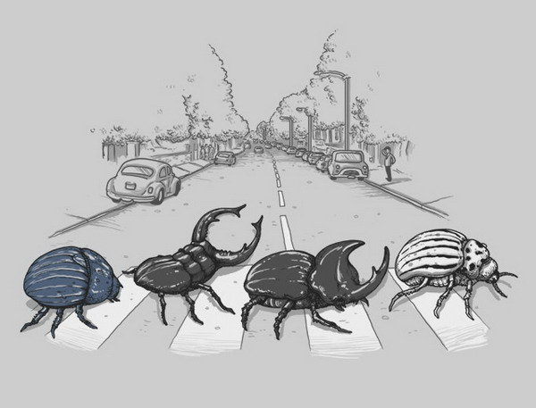 the beetles. title.. where did you find this?