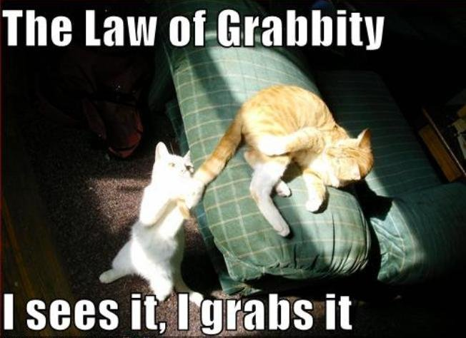 The law of. Grabbity. Sure this works for people too . The law. Oh i think this should get to the front page :D