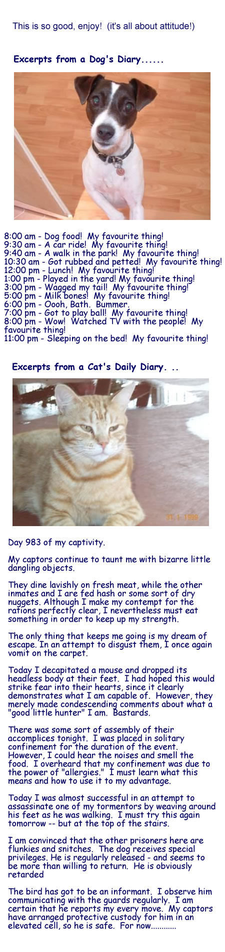 the diary of animals.. found on facebook. friend and subscribe for daily lulz!. This is so good, enjoy! (its all about attitude!) Excerpts from Dog' s Diary ...