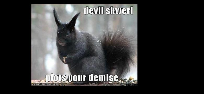 the devil has taken over the suirrels. at least they don't have bazookas or guns!. clout. That was from when I was turned into a squirrel. You can obviously tell by it's elongated ears and sleek black hair.