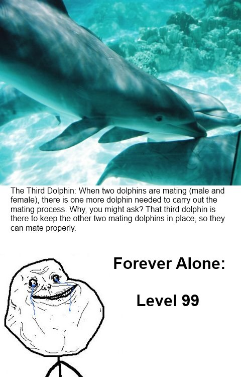 """The Third Dolphin. . The Third' """"dorphin: When we dolphins are mating (male and female), there is ene mere dolphin needed to carry out the mating process. Why,"""