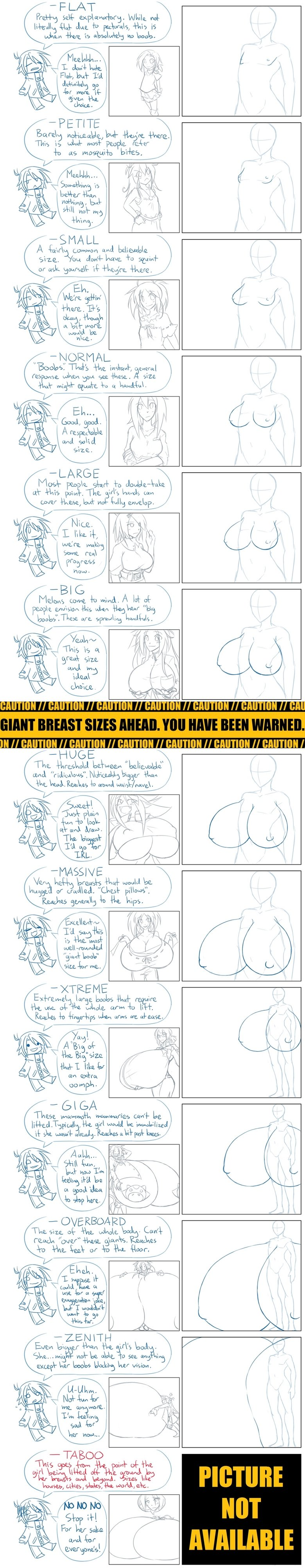 The B.R.A. . What is the B.R.A.? No, it's not that Battle Ready Armor thing. It stands for any and all of these:<br /> - Breast Referenc