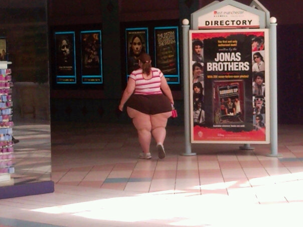 The Jonas Brothers real fans. OH DEAR GOD.. your messed up if you rag on fat people