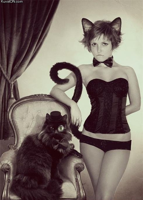 The aristocat. . Kuv . carn. That is one sexy cat! Oh, and the girl is nice, too.