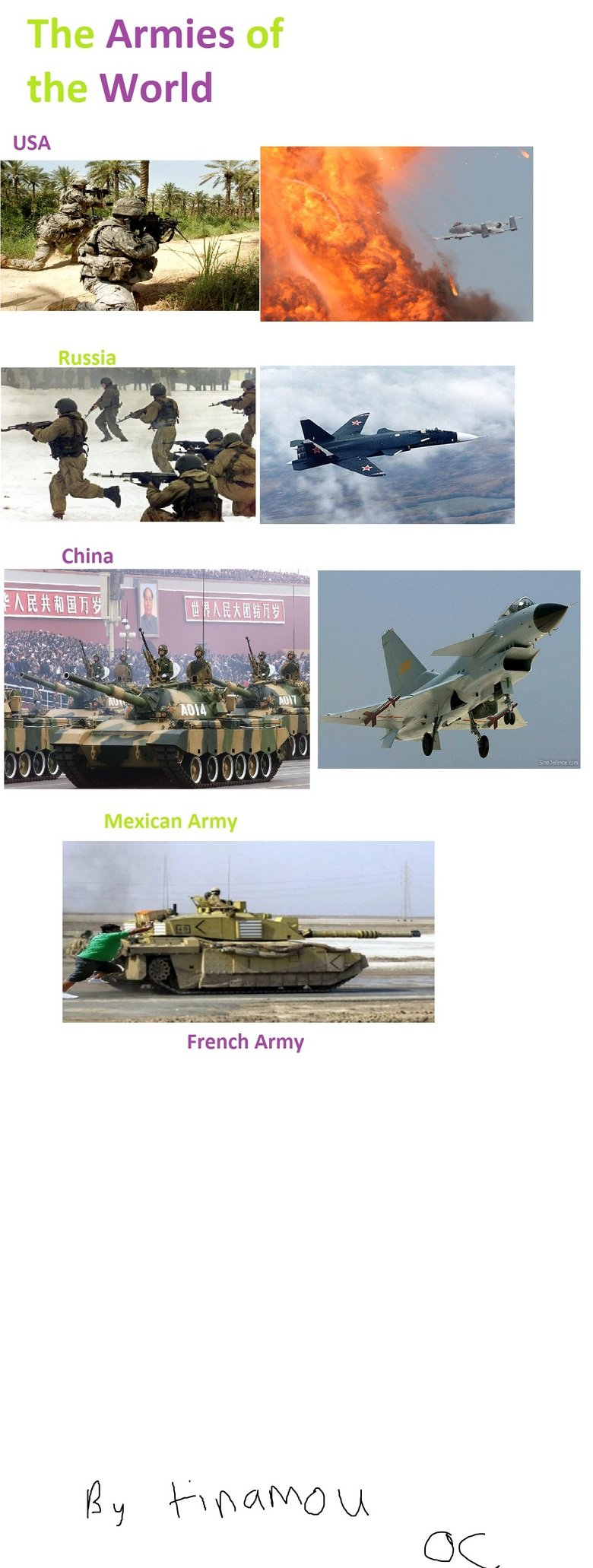 The Armies of the World. France? OC by me. The Armies of the World French Army. i love how theres only 5 country...