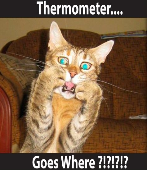 """Thermometer...goes where? - Funny Meme. . Thermometer,"""","""