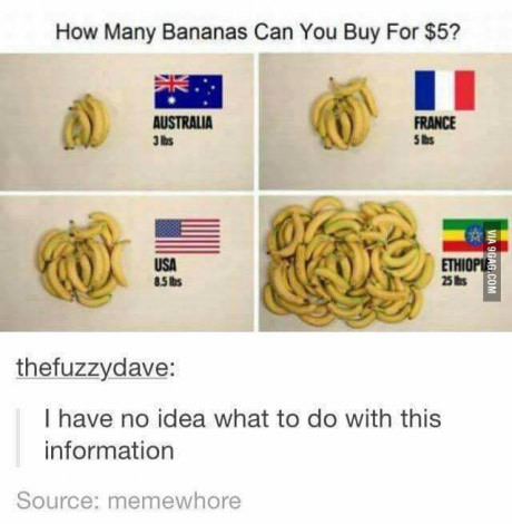 This post is bananas. I'm in love with bananas. How Many Bananas Can You Buy For ? I have no idea what to do with this information Source: famewhore. I love bananas, but the window of time to eat them is too short.
