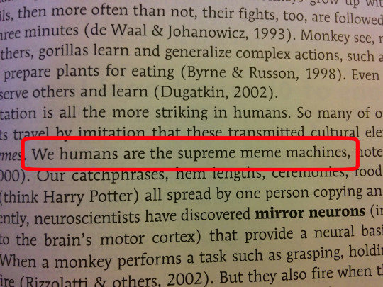 "This Textbook Knows What's Up. . tpu' mi] Wtt ils, then more often than not, their h .'---""- were gorillas learn and generalize complex actions 'i, r, 1', idi'"