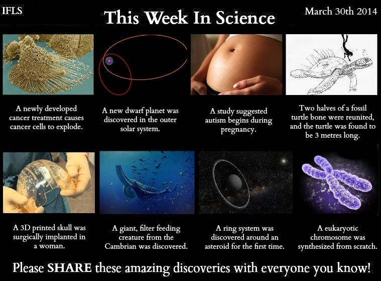 This week in science. Cancer cells: Dwarf planet: Autism: Turtle: 3D printed skull: Cambrian creature: Ring system: Chromosome: . This Week In Science arc Ah 20