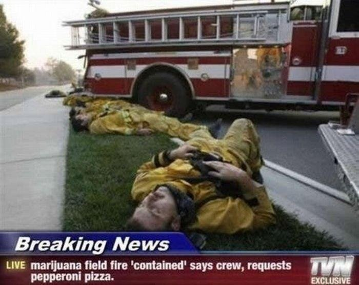 this just in. . Breaking Ne ; LIFE marijuana field fire 'contained' says crew, requests pepperoni pizza.. Everything that has to do with weed gets front page on fj! Hell, I bet 3/4 of us are high right now! :P